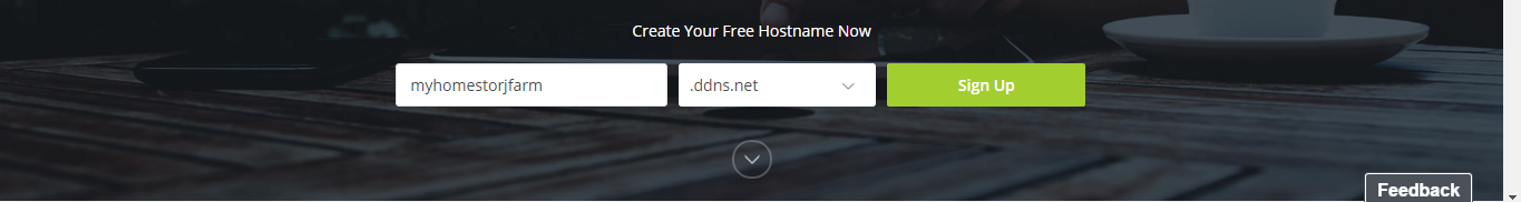Figure 4.1. Adding our own DDNS hostname.